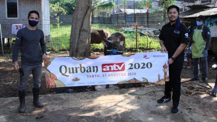Berbagi Saat Idul Adha, ANTV Serahkan 2 Sapi, 2 Kambing dan 2 Domba Untuk Disumbangkan ke Warga