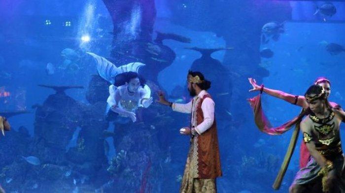 Nikmati Akhir Pekan Nonton Atraksi Putri Duyung di Jakarta Aquarium