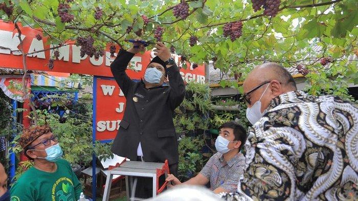 Atasi Masalah Ekonomi dan Sosial, Program Kampung Sejahtera Mandiri Bakal Diterapkan di 1.014 RW