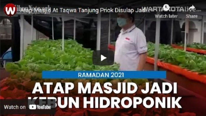 VIDEO Atap Masjid At TaqwaDisulap Jadi Tempat Tanaman Hidroponik
