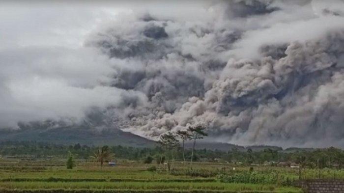 Awan Panas Guguran Gunung Semeru Membubung Tinggi Sejauh 4,5 Km, ini Daerah yang akan Terdampak