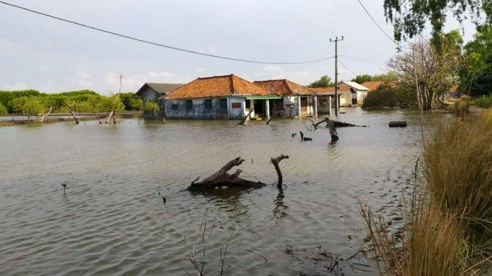 Hingga Kini Banjir Rob Masih Merendam 2 Desa Di Muaragembong, Warga Semakin Kesusahan