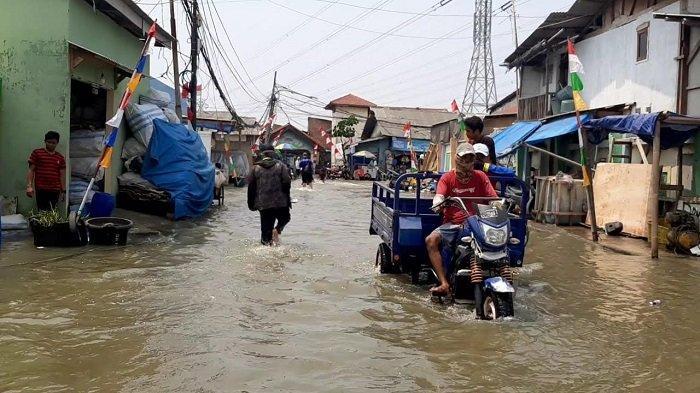 VIDEO Permukiman Muara Angke Diterjang Banjir Rob, Aktivitas Warga Lumpuh