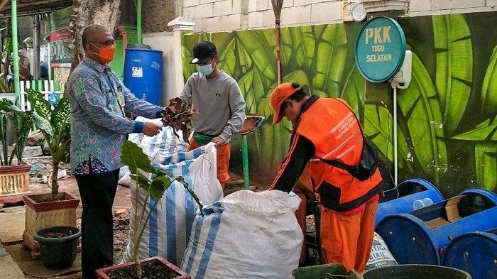 Bank Sampah Kelurahan Tugu Selatan Ubah Sampah Organik Jadi Pupuk Padat