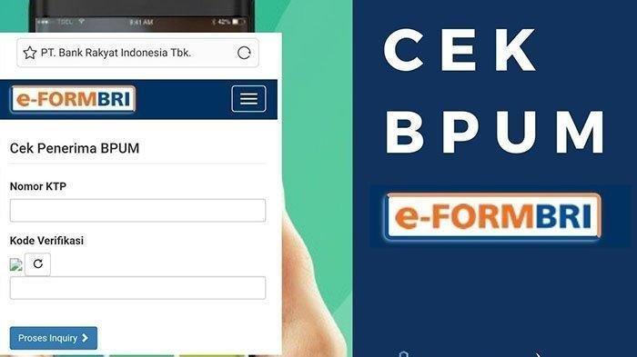 Bantuan UMKM lewat E-form BRI