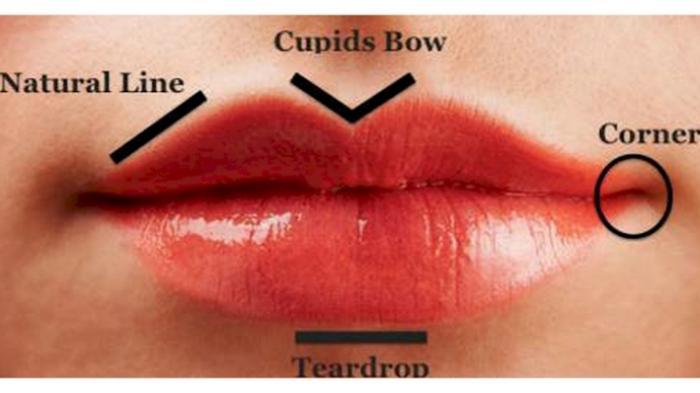 Makna Kepribadian di Balik Bentuk Bibir