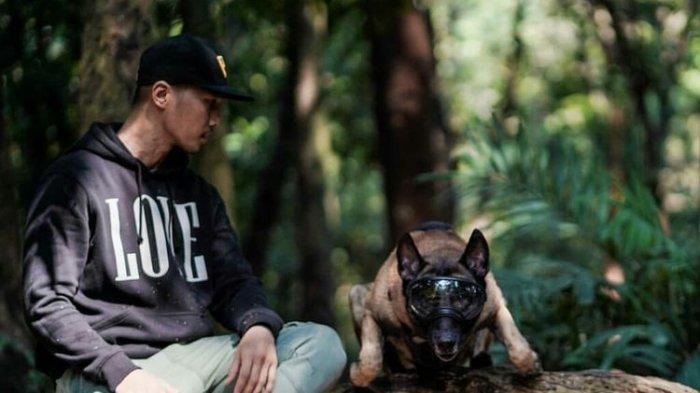 Terungkap, Pemilik Sebenarnya Anjing Malinois Belgian Polisi Masih Periksa Saksinya