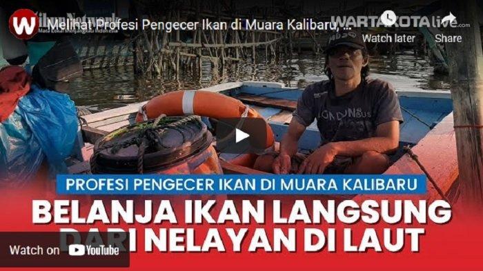 VIDEO Melihat Profesi Pengecer Ikan di Muara Kalibaru, Belanja Langsung di Laut Lalu Jual di Darat