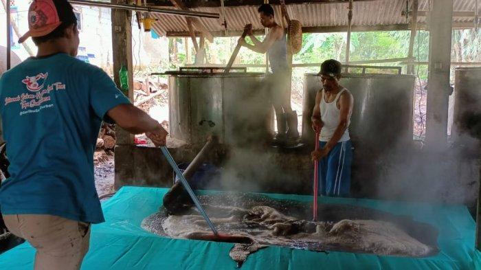 Produsen Cincau Hitam di Tenjolaya Bogor Kebanjiran Pesanan selama Bulan Suci Ramadan