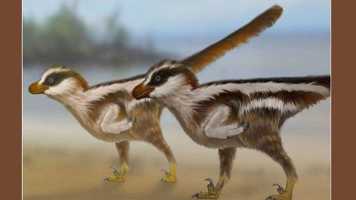 Kakinya Cuma 1 Sentimeter, Jejak Dinosaurus Terkecil Ditemukan di Korea Selatan