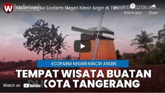 VIDEO Melancong ke Ecofarm Negeri Kincir Angin di Tangerang