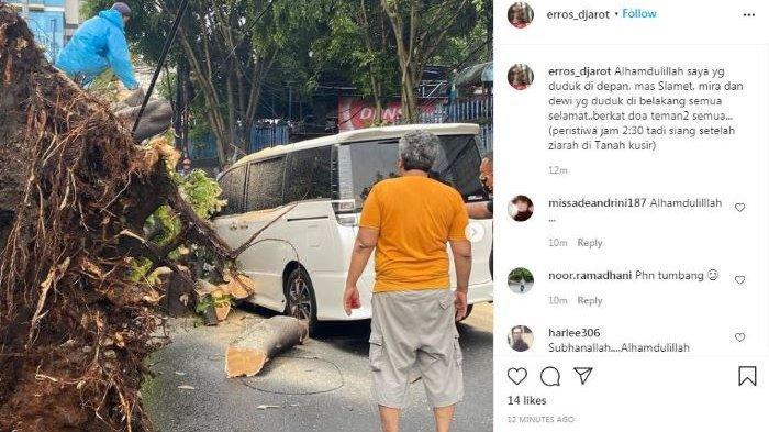 Mobil Eros Djarot Tertimpa Pohon Rubuh Akibat Hujan Disertai Angin, Sedang Ziarah di Tanah Kusir