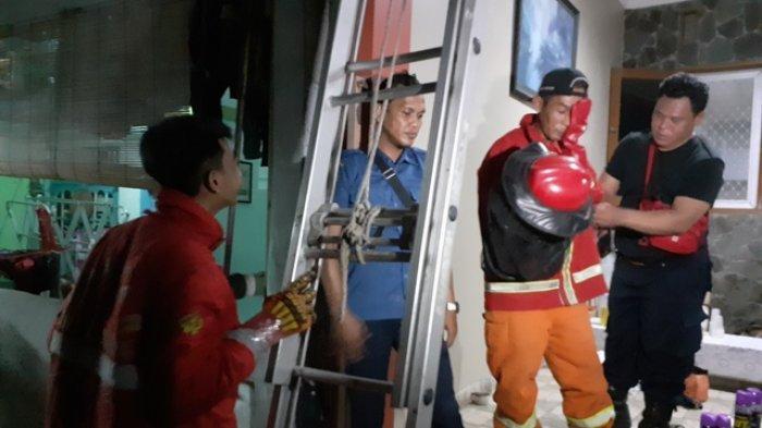 VIDEO: Pekerja Bangunan Tersengat Tawon, Petugas Damkar Kota Bekasi Evaluasi Sarang di Atap Rumah