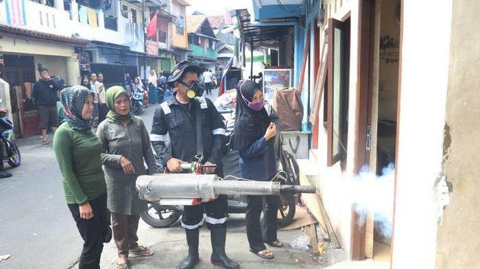 BERITA FOTO: Ini yang Dilakukan Petugas untuk Membasmi Penyebaran Penyakit DBD