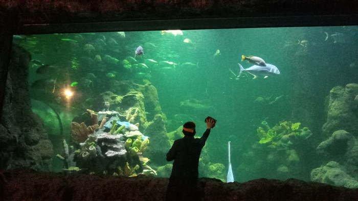 Taman Impian Jaya Ancol Buka Kembali Sabtu  20 Juni 2020, Atlantis Water Adventures Masih Ditutup