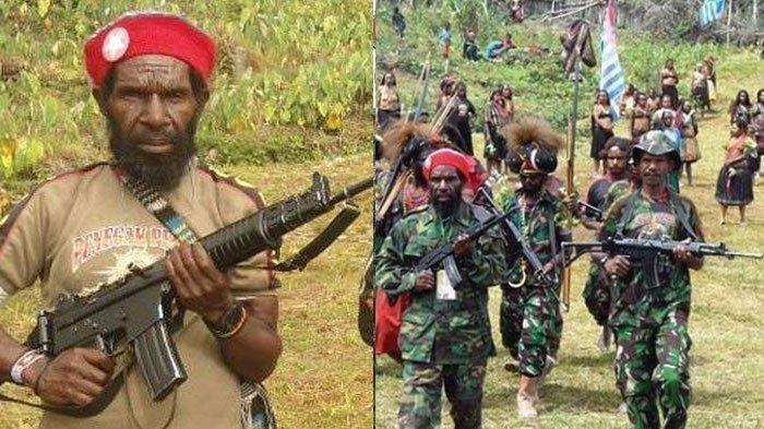 KKB Papua yang Tembak dan Mutilasi Warga Ternyata Bagian Tokoh Goliat Tabuni, Ini Rekam Jejaknya