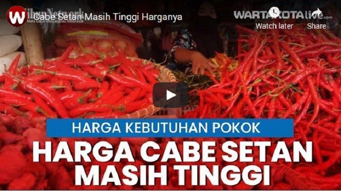VIDEO Cabai Setan Masih Tinggi Harganya di Sejumlah Pasar di Tangerang