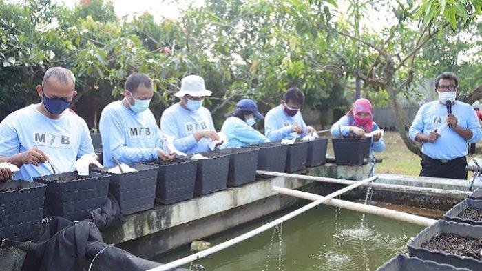 Hari Lingkungan Hidup Sedunia, Pemkot Jakut Tanam Bibit Tanaman Produktif Hingga Tebar Lele dan Nila