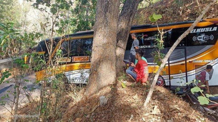 HEBOH Bus Nyasar ke Hutan Tunggangan Wonogiri, Ada Wanita Cantik Misterius Duduk di Samping Sopir