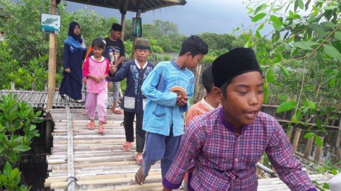 10 Tahun Usai Tumpukan Sampah di Muara Angke Jadi Hutan Mangrove