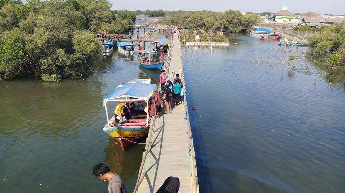 Destinasi Wisata Bekasi, Banyak Tidak Tahu Bekasi Punya Wisata Jembatan Cinta dan Hutan Mangrove