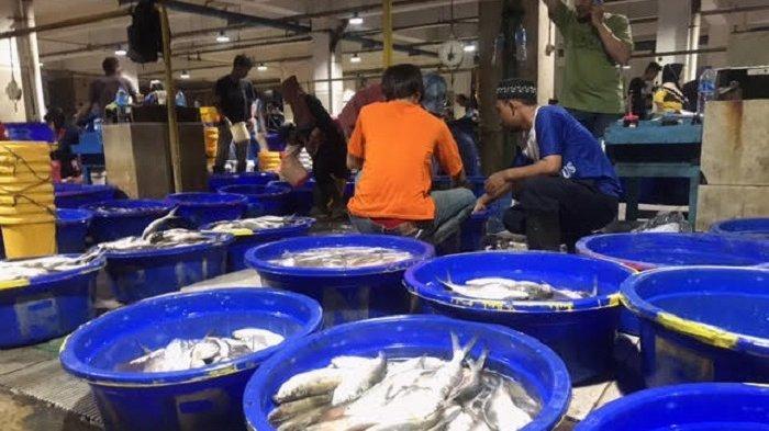 3 Hari Jelang Imlek, Harga Ikan Bandeng Diprediksi Melonjak Naik Jadi Rp 50.000 per Kilogram