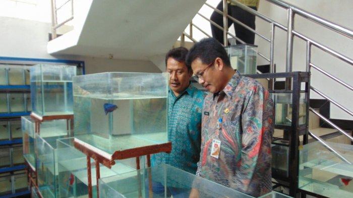 Kasudin KPKP Jakarta Barat Akui Pakai Sistemnya Meski Ogah Disebut OK OCE