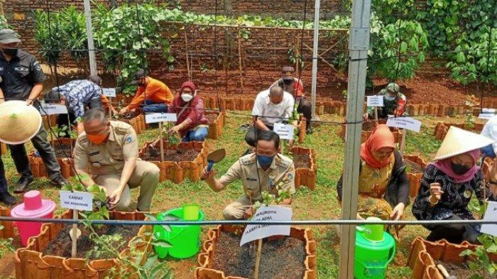 Isnawa Adji Puji Sentra Anggur di RPRTA Durian, Inovasi Kreatif Tingkatkan Ketahanan Pangan