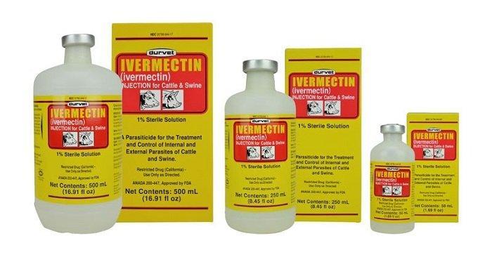 Ivermectin Disebut-sebut Ampuh Tangkal Covid-19, Ketua Satgas IDI: Untuk Obati Infeksi Cacing Gelang