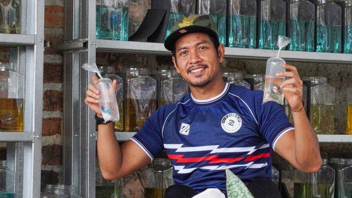 Jajang Mulyana Dan Istri Pelihara Ikan Cupang Untuk Menenangkan Diri Pasca Anaknya Meninggal