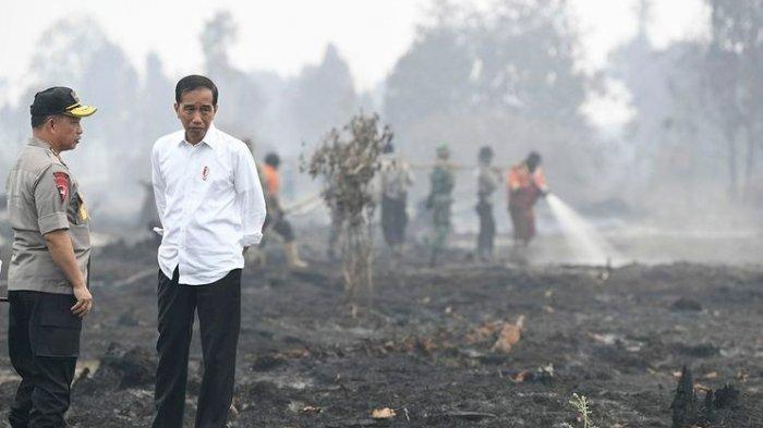 Komjen Idham Azis Jadi Kapolri Tunggu Komisi III DPR Terbentuk