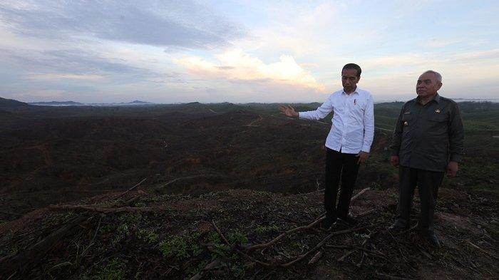 FOTO-FOTO Jokowi Kunjungi Lokasi Ibu Kota Baru, Mobil Menteri Sempat Terperosok di Pinggir Jurang