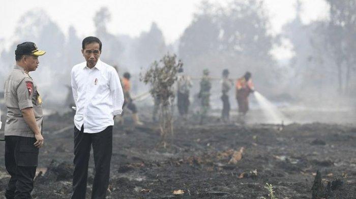 Moeldoko Pastikan Jokowi Bakal Tagih Janji Kapolri Soal Penuntasan Kasus Novel Baswedan