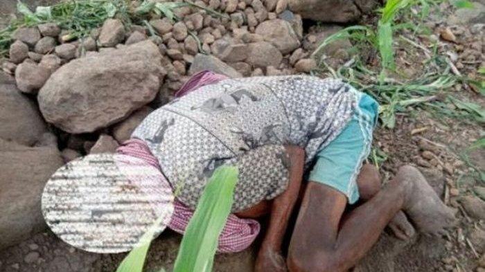 Kisah Ambo Tang Daeng Tutu, Kakek Meninggal karena Kelaparan Tak Dipinjami Ambulans, Wagub Murka