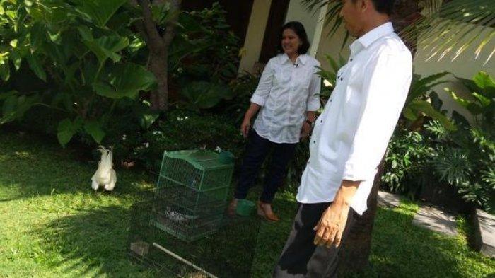 Kalian Masih Nyicil Rumah? Tak Usah Sedih, Jokowi Juga Pernah Mencicil Rumah Saat Susah,Ini Kisahnya