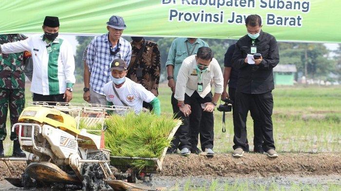 Juni 2020, Ekspor Pertanian Indonesia Meningkat Tinggi