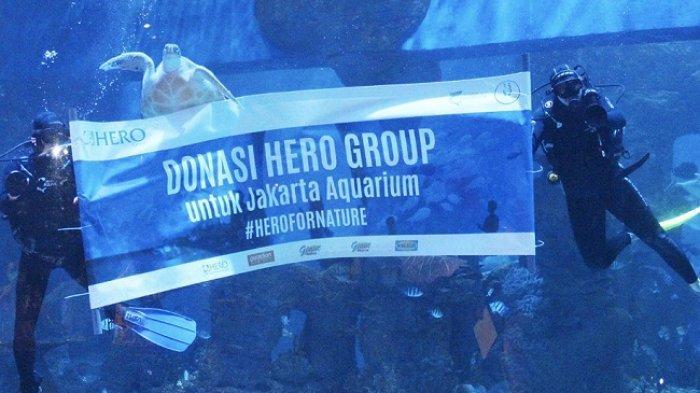 Dukung Kelestarian Biota Laut, Hero Group Donasi Pakan di Jakarta Aquarium dan Gelar Wisata Edukasi