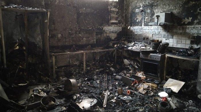 Seekor Kura-kura Ditemukan Hidup di Tengah Kobaran Api saat Ruko di Gambir Terbakar