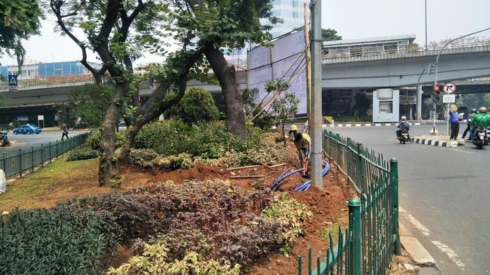 Okupasi Taman, Bina Marga Jaksel Bakal Bongkar Galian Kabel Liar