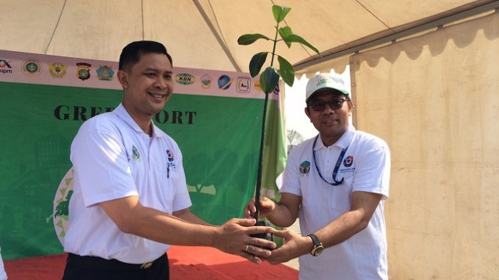 Sejumlah Seribu Pohon Mangrove Ditanam di Marunda