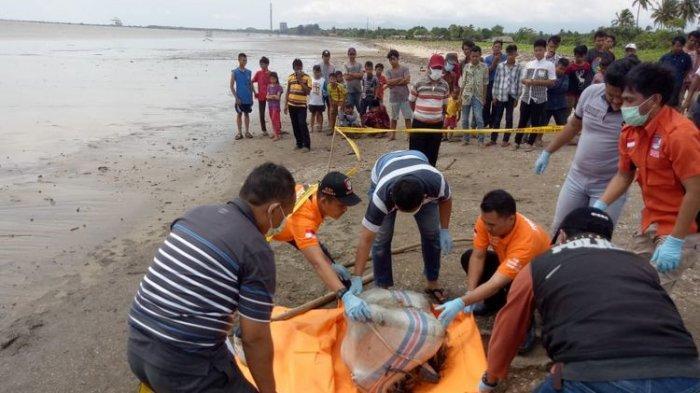 BREAKING NEWS:Setelah Mayat dalam Koper, Kini Penemuan Mayat dalam Karung di Pandeglang
