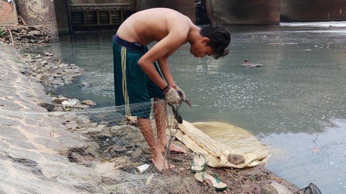 Air Kali Bekasi Tercemar Limbah Jadi Berkah bagi Pemburu Ikan Sapu-sapu