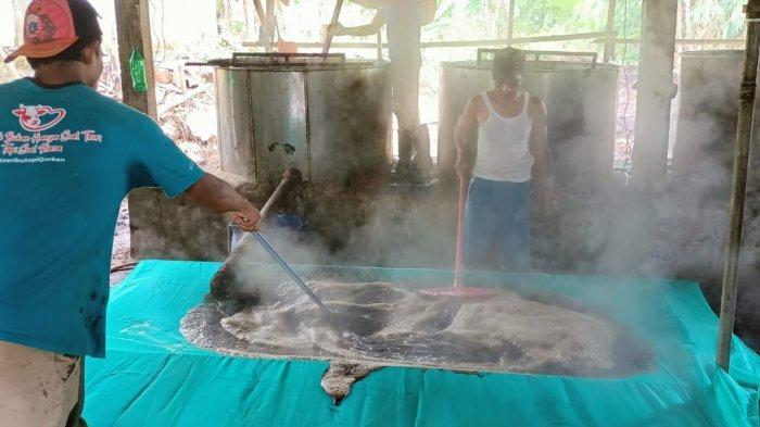 Pekerja di sentra produsen cincau hitam di Kecamatan Tenjolaya, Kabupaten Bogor tengah mengolah cincau. Dari tempat inilah cincau hitam disalurkan ke seluruh wilayah Jakarta dan sekitarnya dan mewarnai aneka minuman menu berbuka puasa.