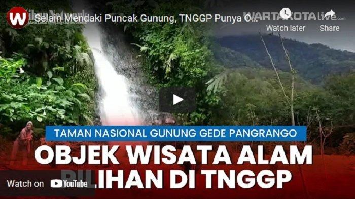VIDEO Taman Nasional Gunung Gede Pangrango Punya Objek Wisata Alam Pilihan Selain Mendaki Gunung