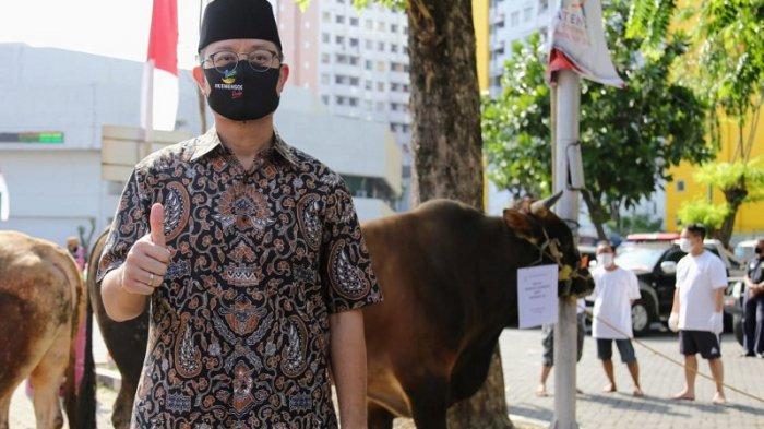 Serahkan Sapi Kurban, Mensos: Idul Adha Kobarkan Semangat Perlawanan Terhadap Pandemi