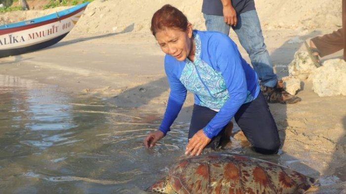 Tidak Lagi Jabat Menteri Kelautan dan Perikanan, Susi Pudjiastuti Tetap Sosialisasikan Makan Ikan