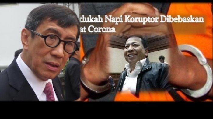 Wabah Corona 22 Napi Korupsi akan Dibebaskan Jika Dikabulkan Jokowi, ICW: Itu Akal-akalan Yasonna