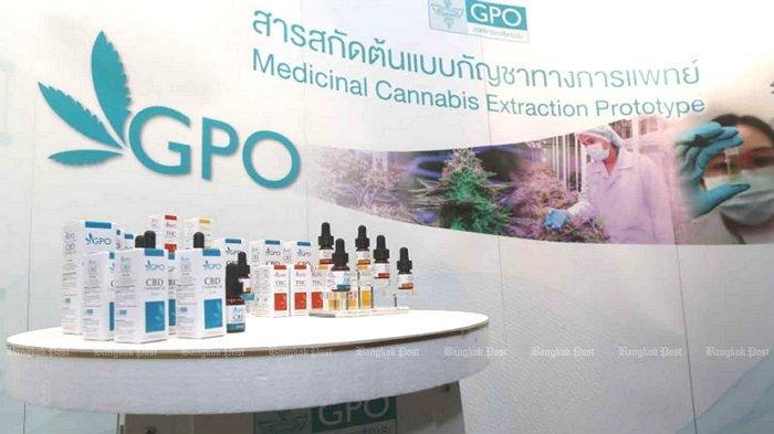 Obat ekstrak ganja produksi Organisasi Farmasi Pemerintah Thailand