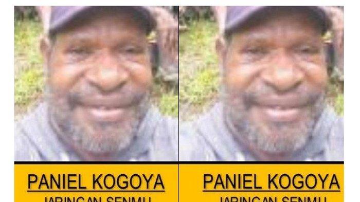 Diduga penyandang dana pembelian senjata api untuk kelompok kriminal bersenjata (KKB) Intan Jaya, Papua, Paniel Kogoya ditangkap Satgas Namengkawi.