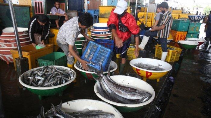 VIDEO Pasokan Ikan dari Nelayan di Pasar Muara Angke Berkurang Imbas Cuaca Buruk